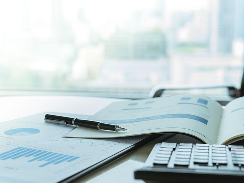 rapport-annuel-creation-entreprise