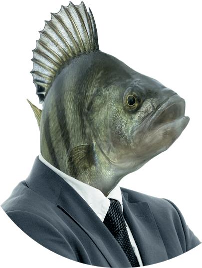 perso-poisson